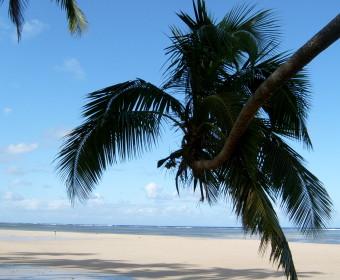 The Beachhouse - Fiji